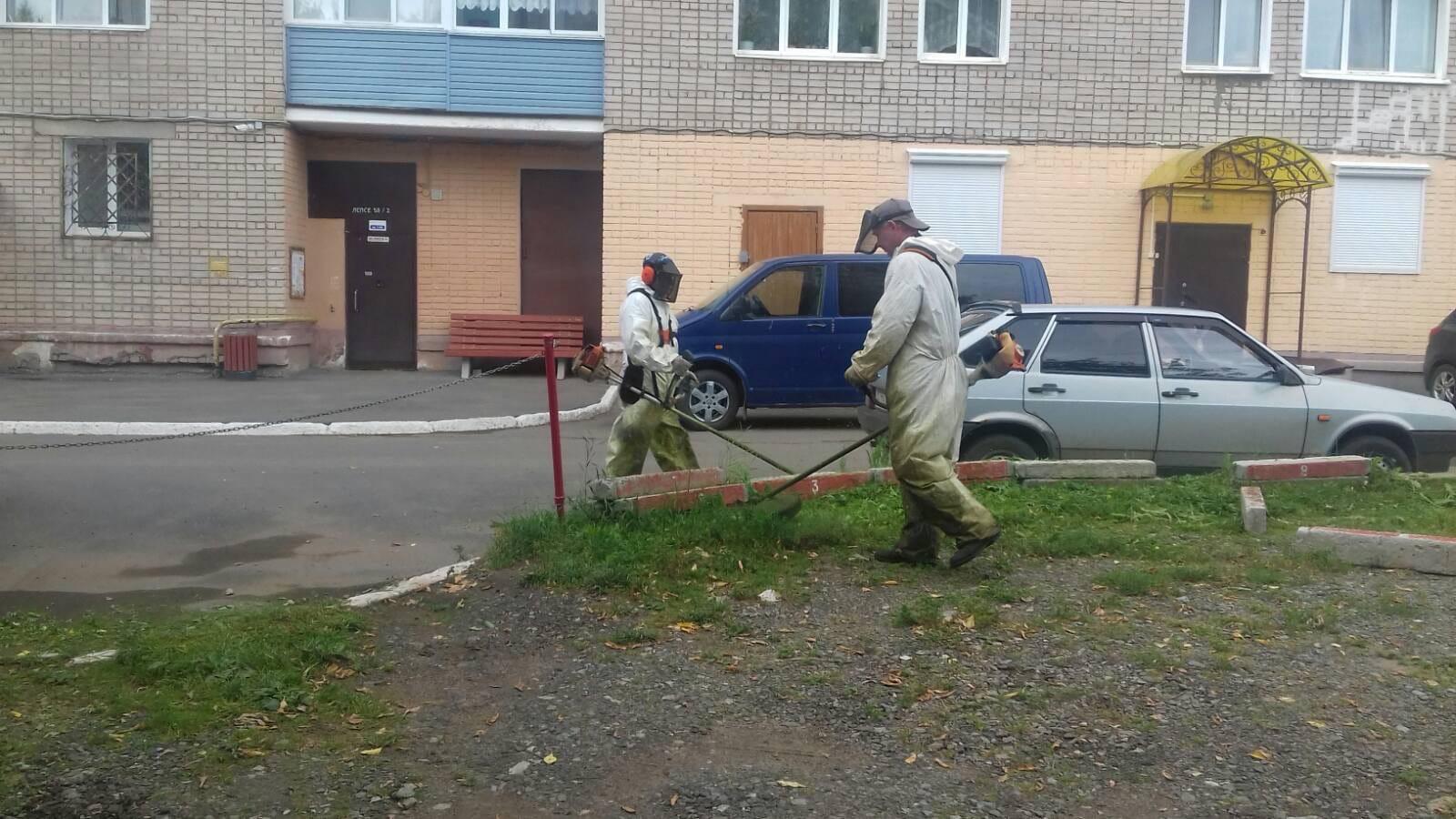 Ул. Лепсе, 58/2 Кошение газонов.