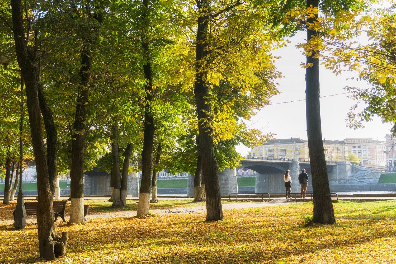 Лучшие места: с каких ракурсов фотографировать Тверь, чтобы было красиво