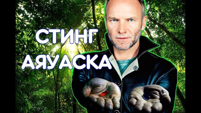 Стинг о своём опыте приёма Аяваски Полное интервью рус озвучка