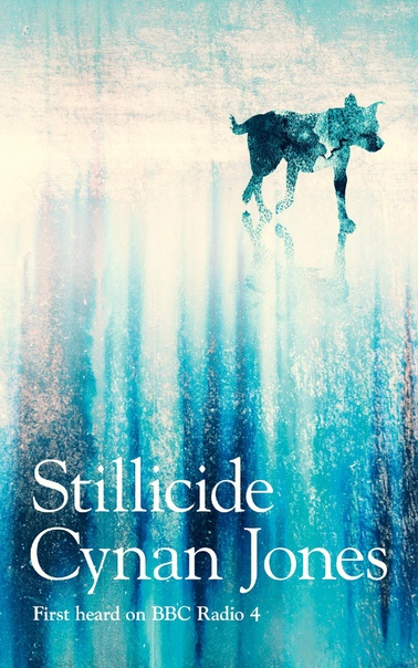 Stillicide - Cynan Jones