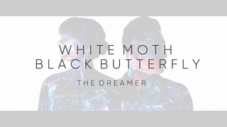White Moth Black Butterfly - The Dreamer (from The Cost of Dreaming)