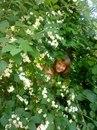 Личный фотоальбом Марины Карповой