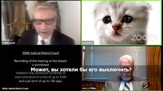 Когда адвокат немного котик