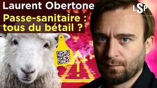 Laurent Obertone - Passe-sanitaire, vaccins: La révolte contre Macron - Le Samedi Politique