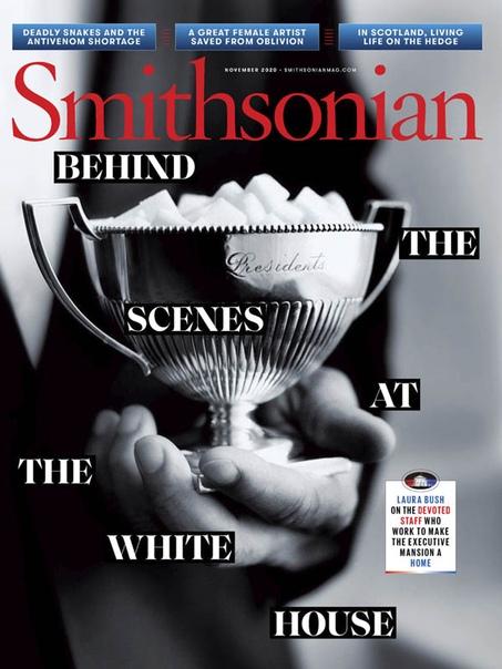 Smithsonian 11.2020