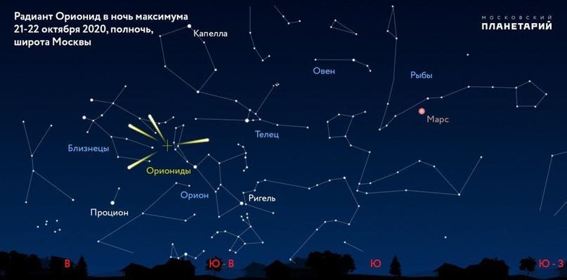 До 20 разноцветных метеоров в час: когда и как смотреть Ориониды