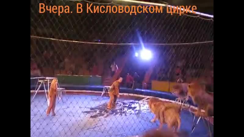 VIDEO 2020 11 21 17 37