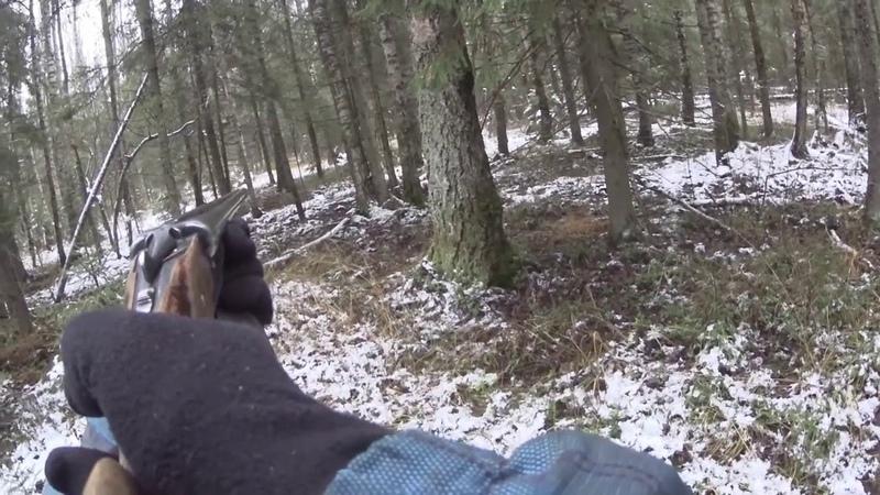 Охота с Русской гончей на зайца 25 11 20