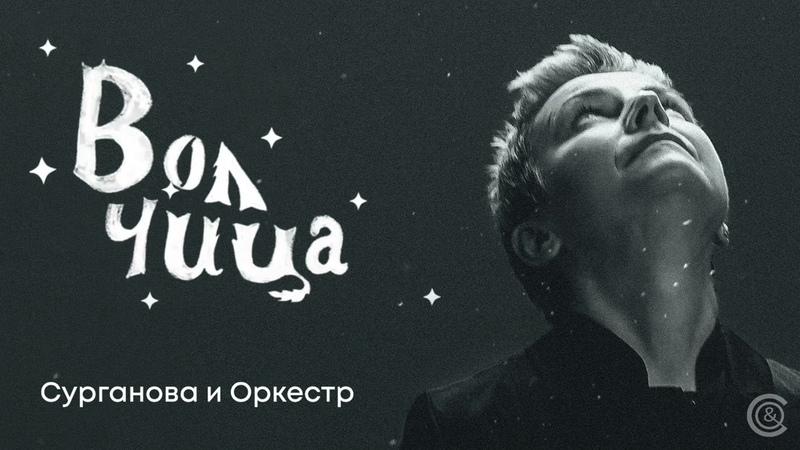 Сурганова и оркестр Волчица сингл 09 04 2021