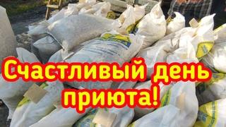 Отчёт с благодарностью! Закупка 1000кг. базового сухого корма для подопечных приюта.