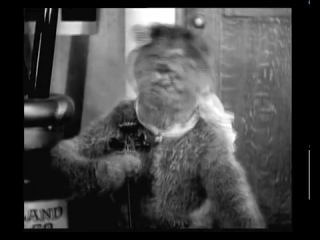 Психоделика 1914 год Кот-мистификатор и Мышь-эпилептик ( 25 кадр )