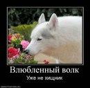 Личный фотоальбом Danil Slepchenko