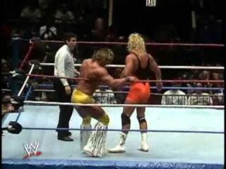 Texas Tornado (c) vs. Mr Perfect, for WWF Intercontinental Title