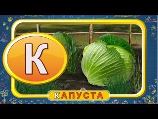 Мультипедия  Русский алфавит  Буква К (Уроки тетушки Совы)