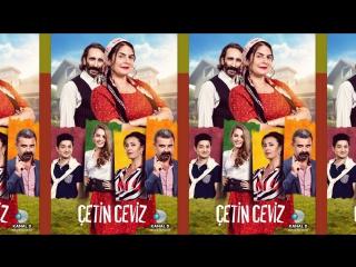 Çetin Ceviz- Yerli Film (2016)