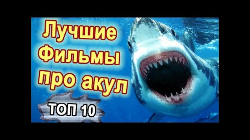 ТОП 10 Лучшие фильмы про акул Фильмы ужасов про акул