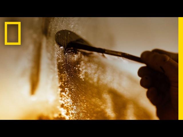 Genius Picasso Trailer National Geographic
