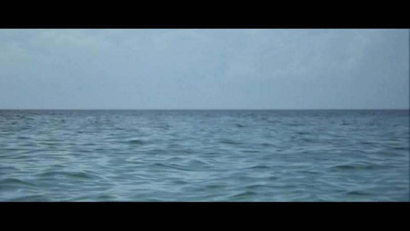«День дельфина» (1973) - драма, фантастика, реж. Майк Николс HD 1080