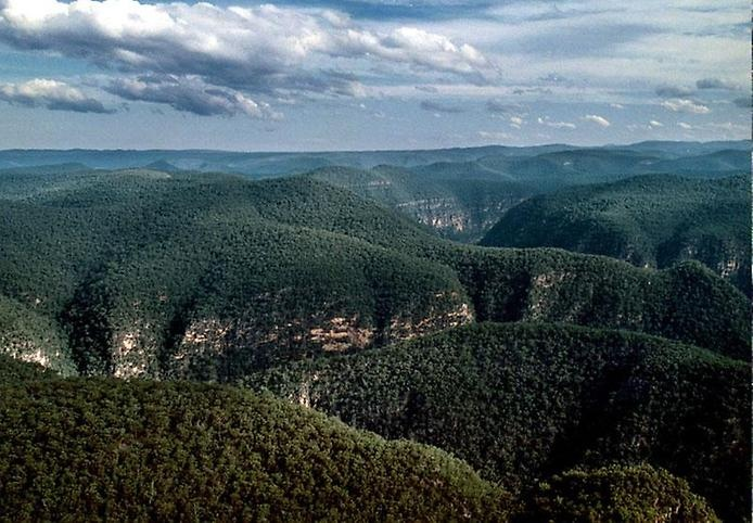 Национальный парк Вуллеми, изображение №4