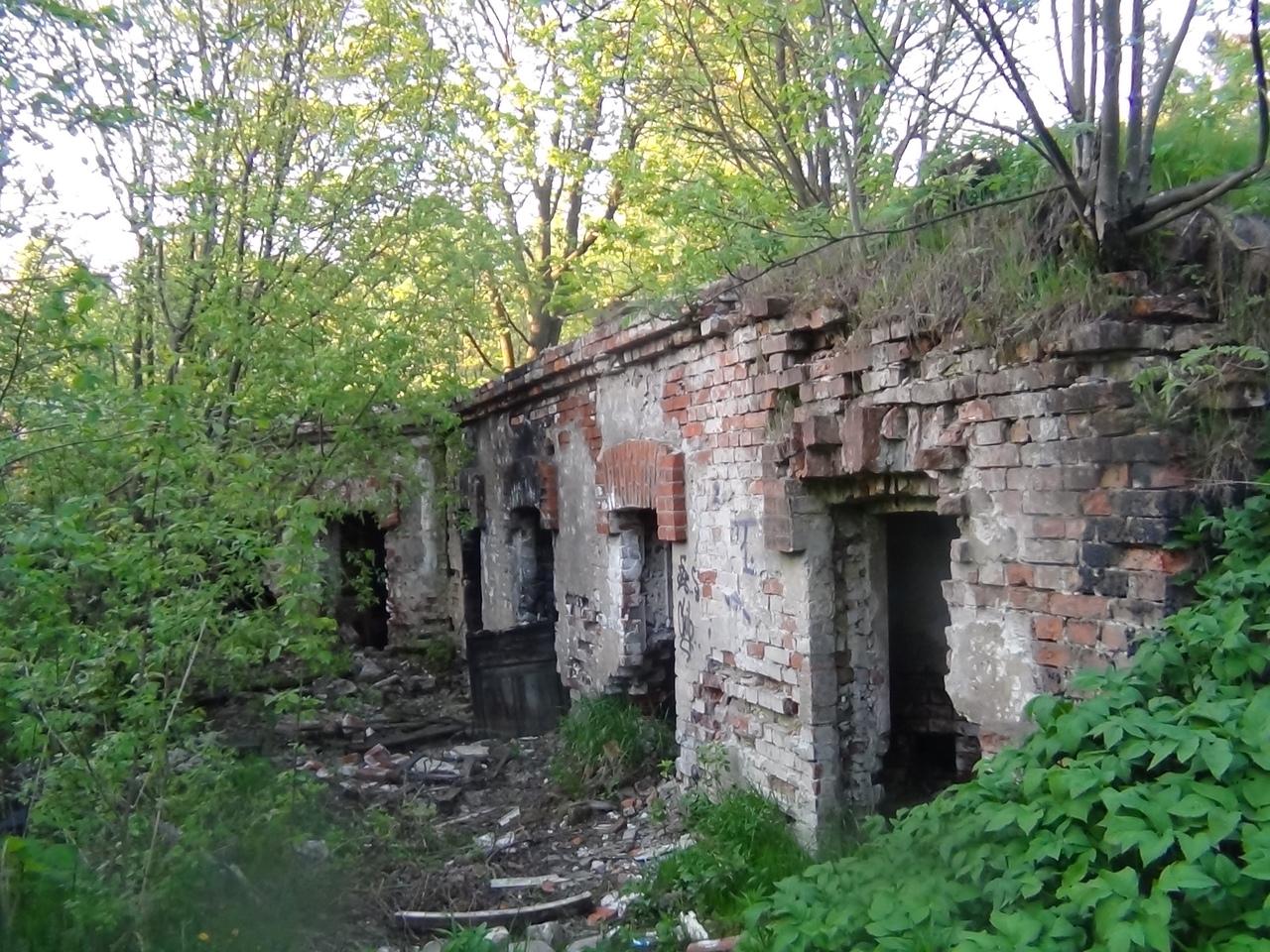Парголовские руины