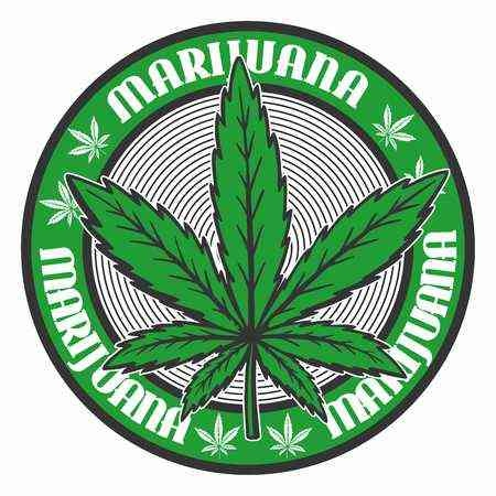 «начки статусов конопл¤ куплю кусты марихуаны