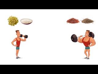 Как РЕАЛЬНО должен тренироваться и питаться ЭКТОМОРФ ЭНДОМОРФ и МЕЗОМОРФ