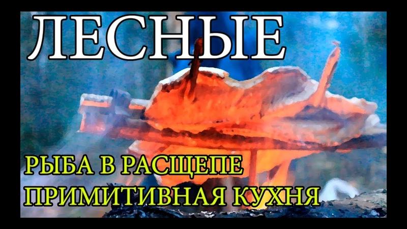 Дикая кухня ЖАРЕНАЯ ЩУКА НА ОГНЕ В РАСЩЕПЕ Cooking Fish Bushcraft Style