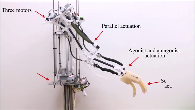 Untethered Multimode Fluidic Actuation: A New Approach to Soft and Compliant Robotics