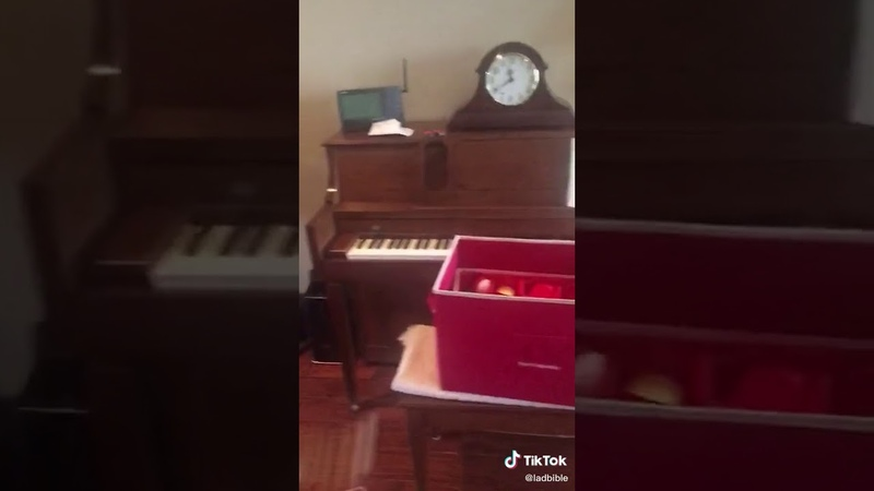 Funny scared cat playing piano while escaping @ladbible
