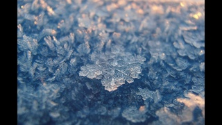Frozen Flowers Ice Chrystals Part B - Houdini Tutorial in russian language