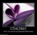 Фотоальбом Станислава Елисеева