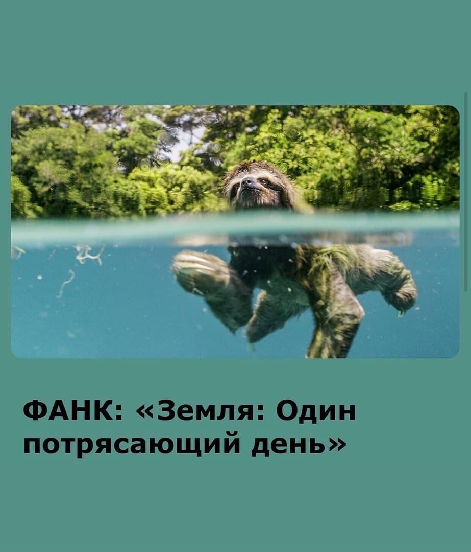 В кинотеатре «Современник» города Петровска продолжается показ фильмов Фестиваля актуального научного кино (ФАНК)