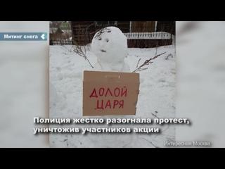 Необычная акция протеста прошла в в Архангельской области, где митингующими оказались снеговики с антипутинскими плакатами