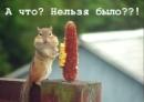 Персональный фотоальбом Екатерины Ереминой