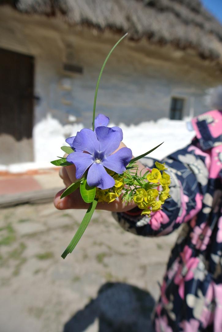 фото из альбома Ани Галушки №1