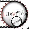 Электросамокаты, гироскутеры | LuxVelo
