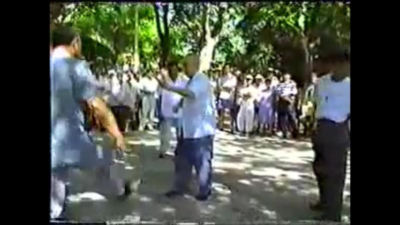 馬岳梁 - 太極勁(2)