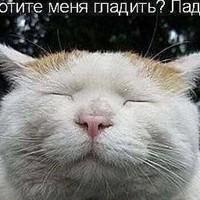 АiasBeleev