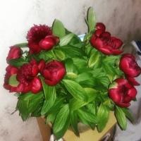 Наталья Кижаева фото №5