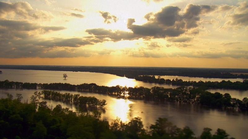21 июня в 19 00 смотрите программу Дикая природа Миссисипи на телеканале HD Life