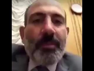 Не зря армян называют ишаками аря пейсар