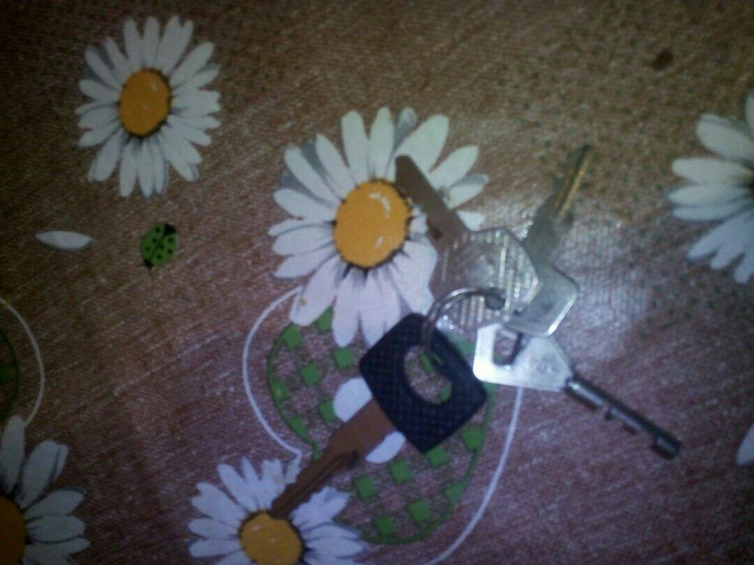 Чьи ключи найлены у Коношской Средней Школы