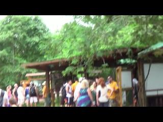 АРГЕНТИНА  Игуассу    После  прохождения  паспортного  контроля  мы  на почти  детском  поезде  отправились к  водопаду