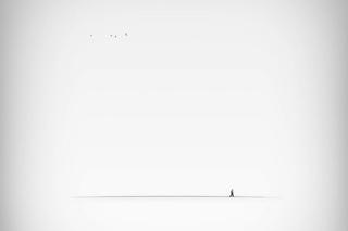 Istvan Lukach фотография #38