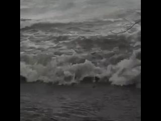 🌊 В Финском заливе бушует ураганный ветер, Балтийс...