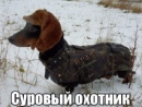 Личный фотоальбом Константина Смирнова