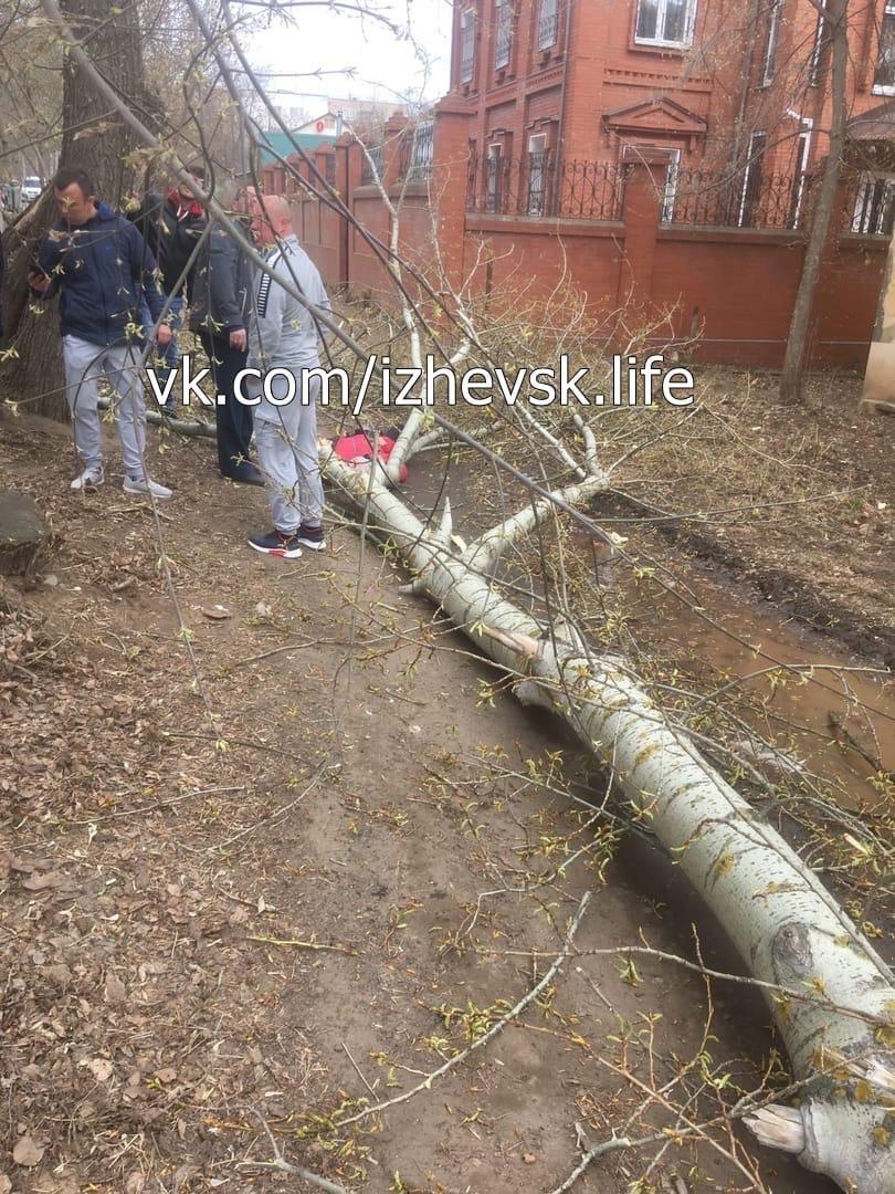 В Ижевске из-за сильного ветра на бабушку