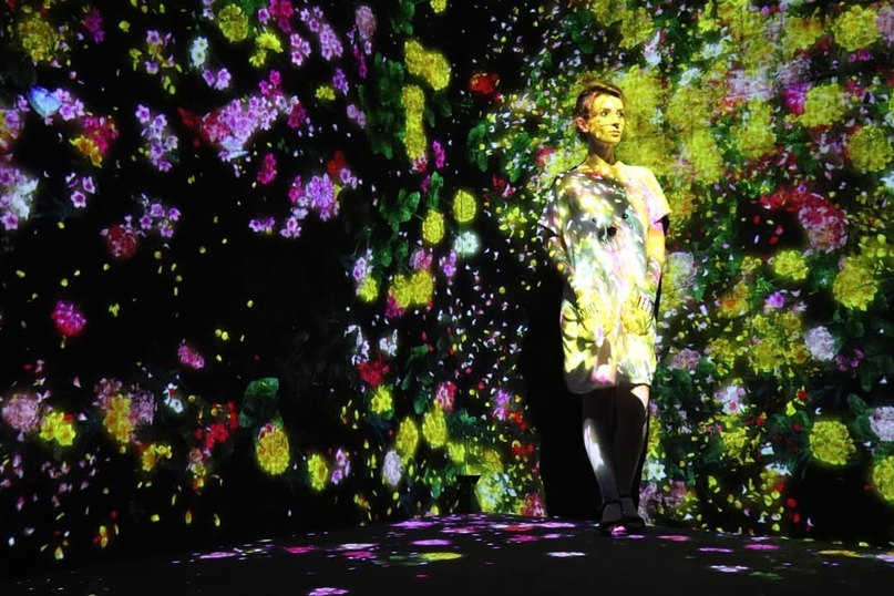 Следуй за «золотым кроликом»: выставка художницы Катерины Чивилевой открылась в...