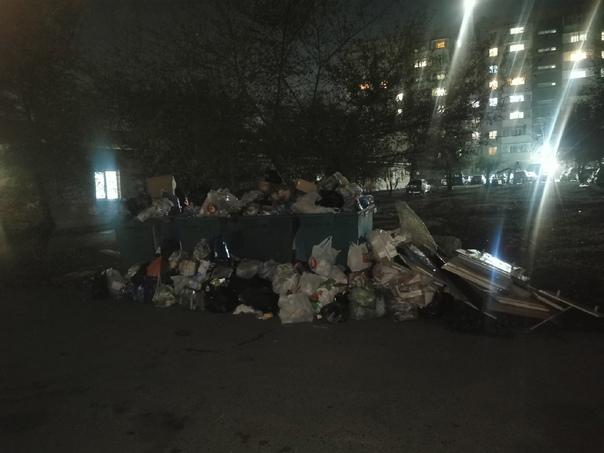 Как-то наш мэр говорил, что будут мусор вывозить к...
