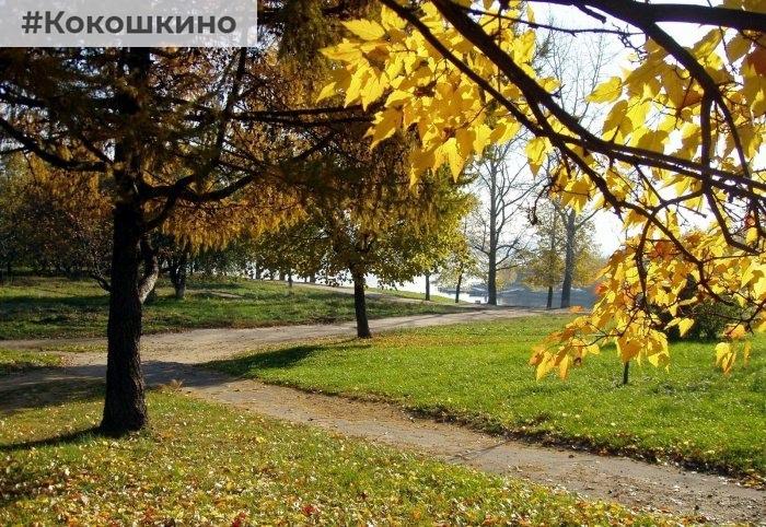 В парках подготовили выставки, экскурсии и кинопоказы.